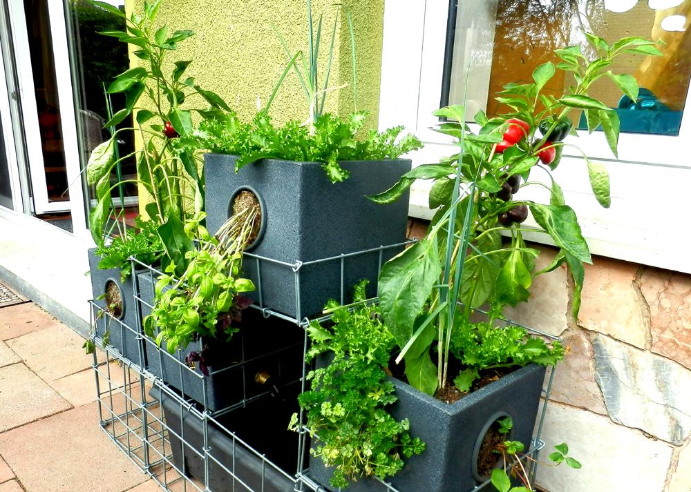geco gardens die kleine farm auf dem balkon. Black Bedroom Furniture Sets. Home Design Ideas