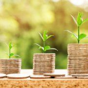 Wie Sie das Geld Ihrer Firma am besten verwalten